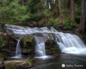 Bowen Park Waterfall