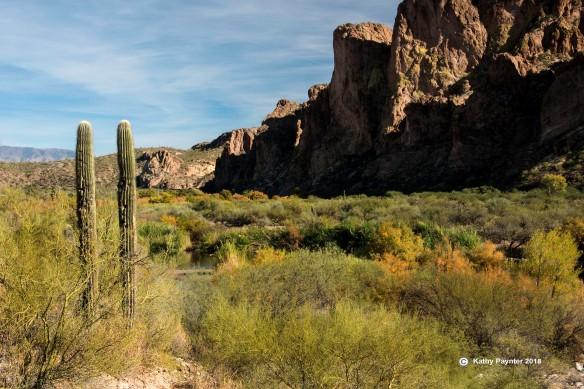 Desert Drive K75_5011IN