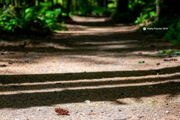 Path K75_9688IN