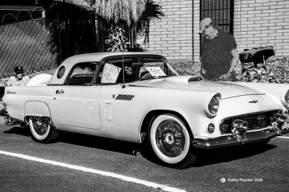 Car 1956 TBird K75_0650IN